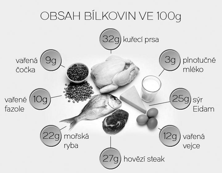 bílkoviny strava hubnutí